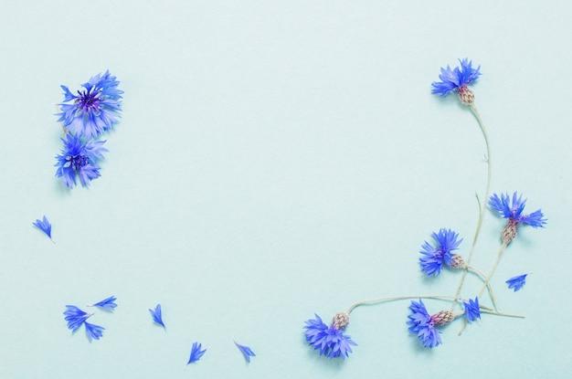 Blaue kornblumen auf grünem papierhintergrund