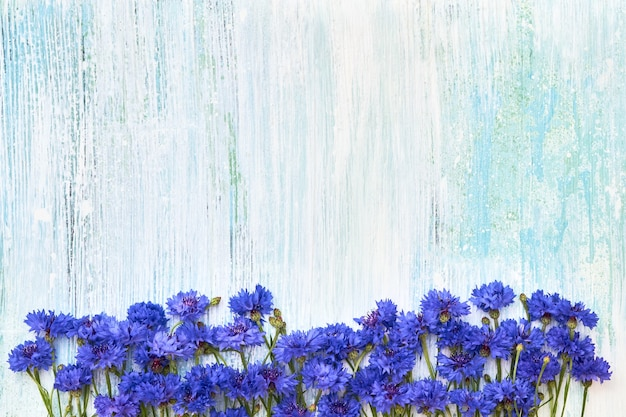 Blaue kornblumengrenze auf blau