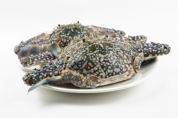 Blaue krabbe lokalisiert auf weißem hintergrund