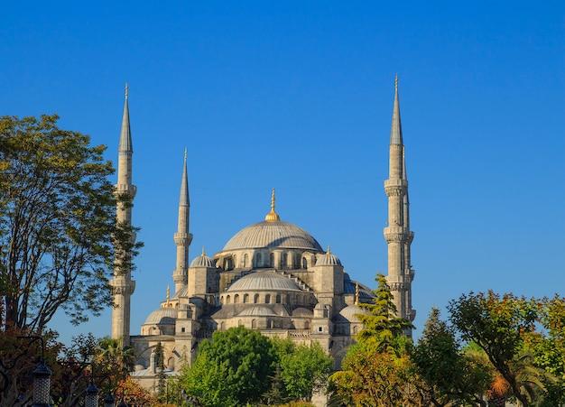 Blaue moschee in istanbul bei sonnenaufgang. truthahn