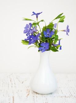 Blaue perwinkle blumen