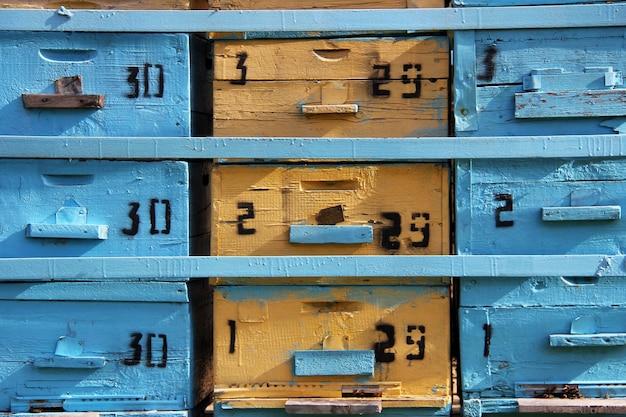 Blaue und gelbe honigbienenzuchtboxen mobile bienenstöcke in einem bienenhaus