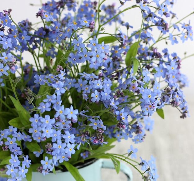 Blaue vergissmeinnicht-blumen als floraler hintergrund zartes lichtbild selektiver fokus