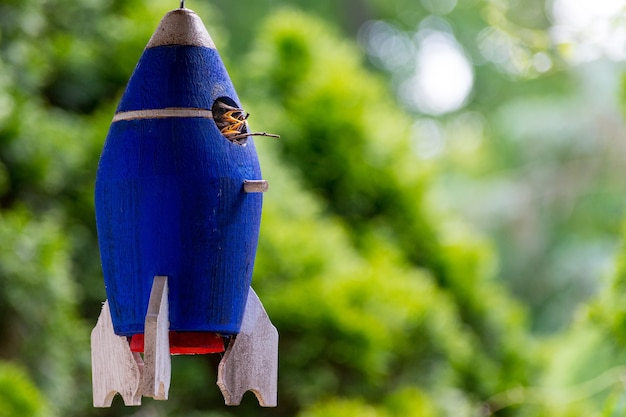 Blaue vögel nisten in form einer rakete
