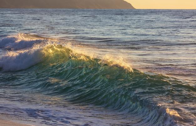 Blaue welle am strand. verwischen sie hintergrund- und sonnenlichtflecken. friedlicher natürlicher hintergrund.
