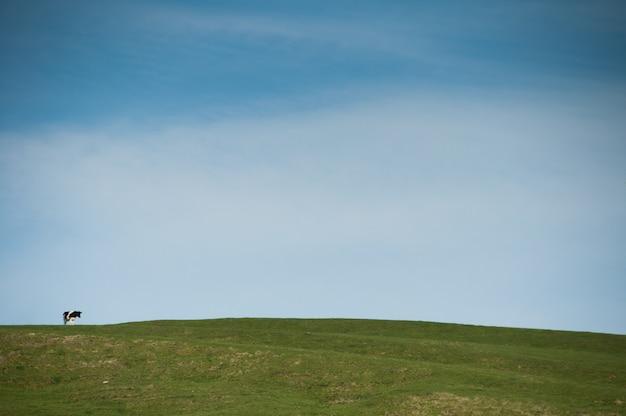 Blauer bauernhof, der nur eine landschaft wartet