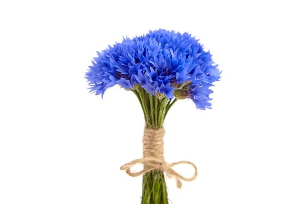 Blauer frischer kornblumenstrauß lokalisiert auf weißem hintergrund