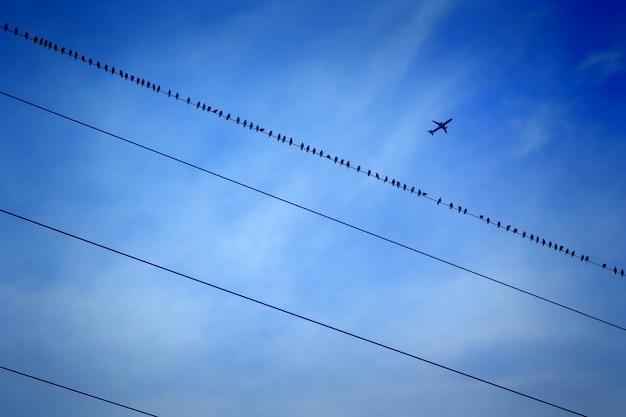 Blauer himmel und flugzeug