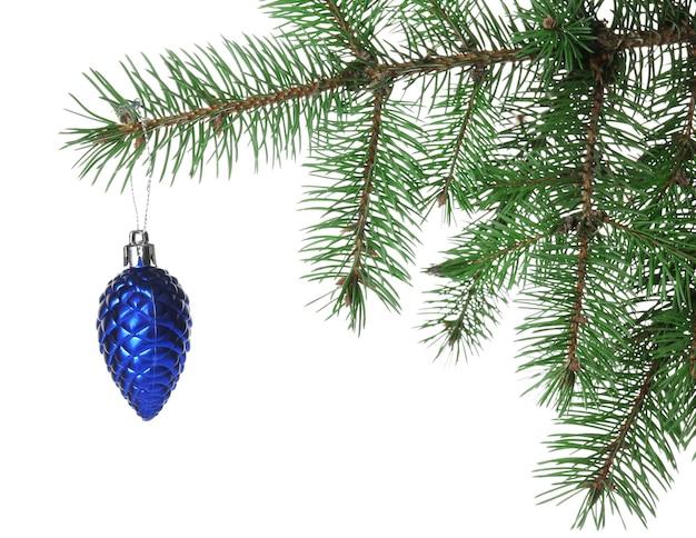 Blauer kegel auf einem weihnachtsbaumzweig, lokalisiert auf weiß