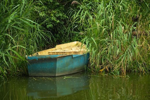 Blaues holzboot, das in der nähe des ufers zwischen weidenlaub, sommerwaldlandschaft verankert ist