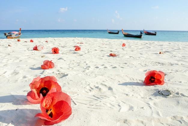 Blaues meer, weißer sand und rote hibiskusblüten