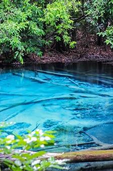 Blaues pool krabi-provinz eins das erstaunen im süden von thailand bestimmungsort. wählen sie den fokus aus.