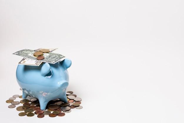Blaues sparschwein mit geld und münzen