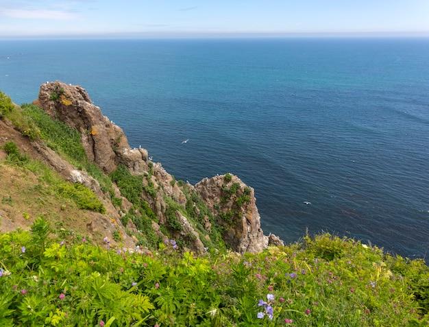 Blick auf den pazifik von einer klippe auf kamtschatka