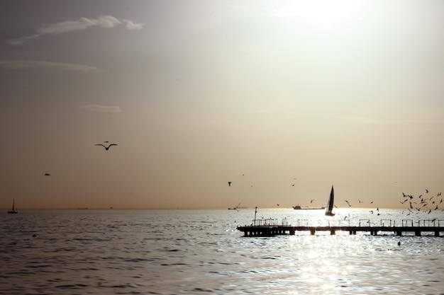 Blick auf den pier mit vögeln und menschen