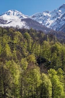 Blick auf die berge und skipisten des skigebiets rosa khutor.