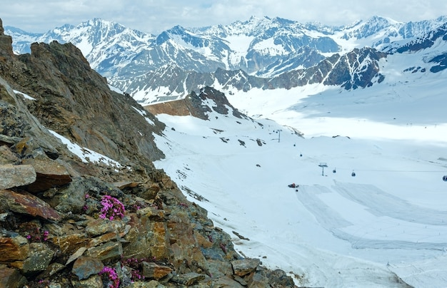 Blick auf die berge von der karlesjochbahn (3108 m., nahe kaunertal gletscher an der österreichisch-italienischen grenze) mit alpenblumen über seilbahn
