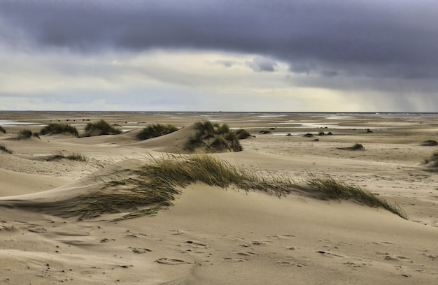 Blick auf die dünen von amrum island, deutschland unter einem bewölkten himmel Kostenlose Fotos