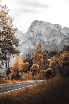 Blick auf die felsigen berge mit einer straße