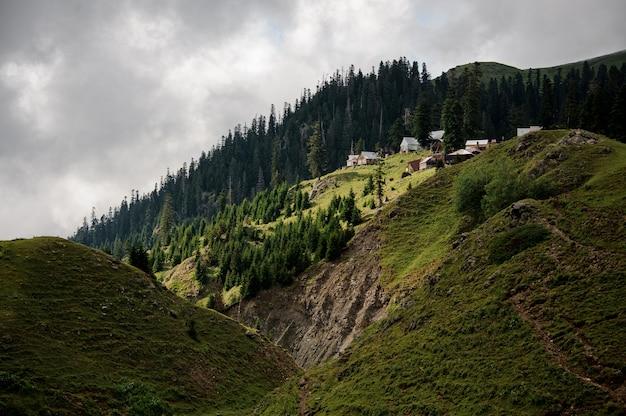 Blick auf die hügel mit grünen wäldern und kleinen wohnhäusern