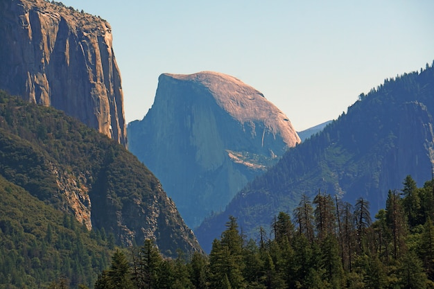 Blick auf die natur des yosemite-tunnels von dieser aussicht aus können sie el capitan, half dome, bridalveil fall und pine tree valley im yosemite-nationalpark wawona rd, kalifornien, usa, sehen