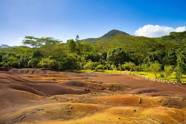 Blick auf die sanddünen von seven coloured earth, umgeben von bäumen auf mauritius