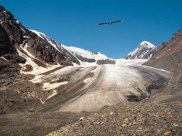 Blick auf einen gletscher auf einem hochplateau. ein adler über einem gletscher.