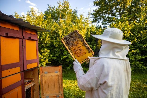 Blick auf einen imker beim sammeln von honig und bienenwachs
