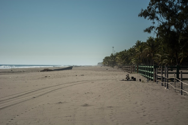 Blick auf einen tropischen strand