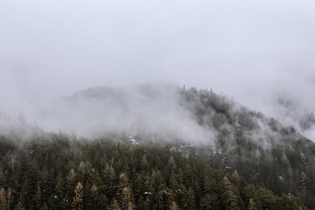 Blick auf grünen berg von nebel bedeckt