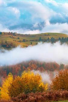 Blick auf schöne hügel, umgeben von dichtem nebel