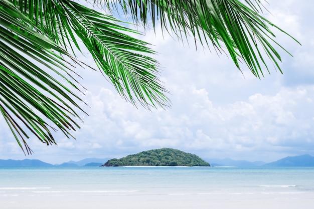 Blick auf schöne tropische palmen. urlaub und ferienkonzept