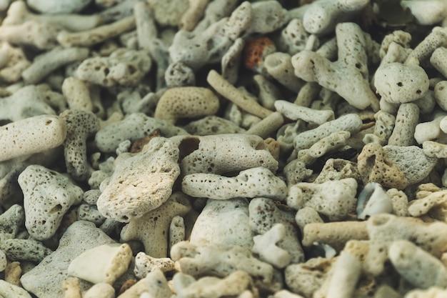 Blick auf weiße korallen, als hintergrund verwenden.