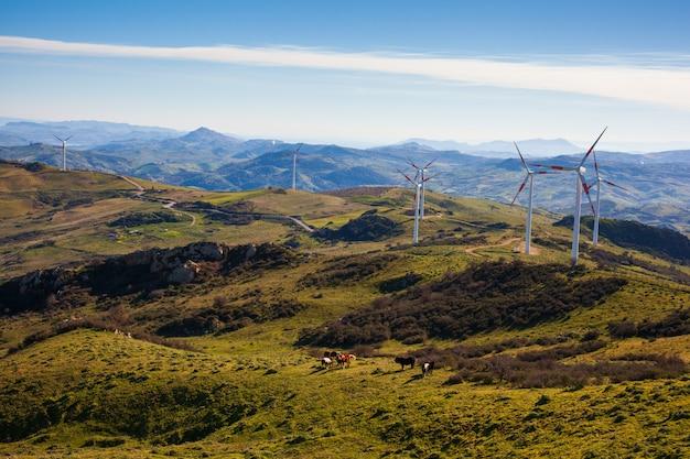 Blick auf windmühlen in der sizilianischen landschaft