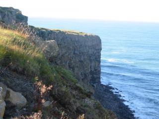 Blick in island