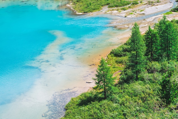 Blick oben auf einen erstaunlichen, lebendigen, azurblauen bergsee im tal. nadelbäume im sonnenlicht. reiche vegetation des hochlands