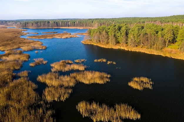 Blick von der höhe des papernya-sees in weißrussland. die natur von belarus Premium Fotos