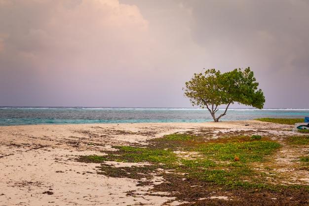 Blick von der insel maafushi auf das kaafu atoll auf den malediven.