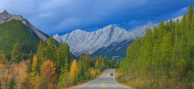 Blick von der straße auf den canadian rockies icefield parkway alberta kanada