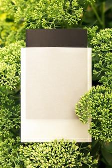 Blick von oben auf den rahmen aus grüner sediumblume und kopienraum auf der verpackung oder dem etikett zum verkauf grüner blätter...