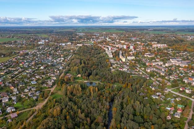 Blick von oben auf die stadt dobele im herbst, wohn- und privathausgebiete, wald und parks, lettland