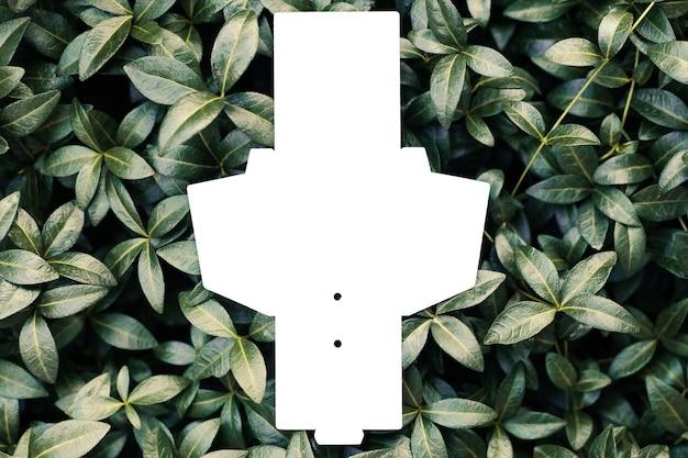 Blick von oben auf die weiße leere entfaltete schachtel für zubehör oder tag für kleidung auf dem hintergrund von immergrün ...