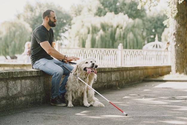 Blindenhund hilft blinden in der stadt. hübscher blinder ruhen sich mit golden retriever in der stadt aus.