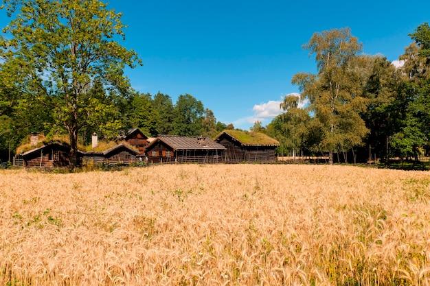 Blockhäuser in norsk folkemuseum, bygdoy, oslo, norwegen