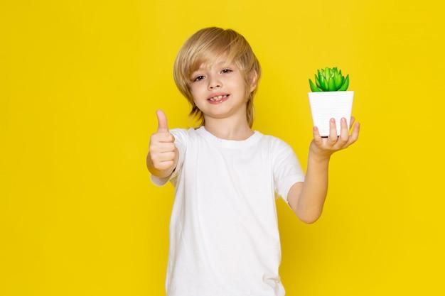 Blond lächelnder junge der vorderansicht entzückend mit der kleinen grünen pflanze auf dem gelben schreibtisch