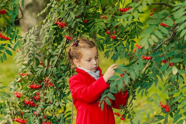 Blondes mädchen im roten mantel und im ebereschenbaum
