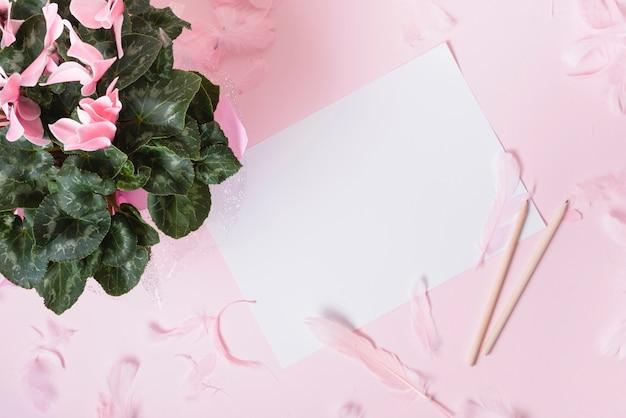 Blühen sie blumenstrauß mit den blumenblättern und federn auf weißbuch gegen farbigen hintergrund