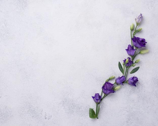 Blühende blumen der draufsicht auf tabelle