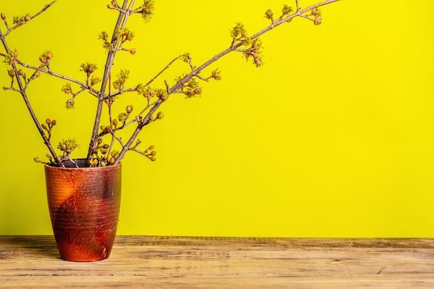 Blühende hartriegelzweige in einer keramikvase auf einem gelben sonnigen.