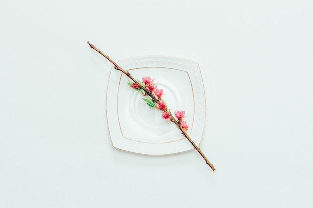 Blühende niederlassung eines pfirsiches mit rosa blumen auf einer weißen untertasse auf einem weißabschluß oben, draufsicht